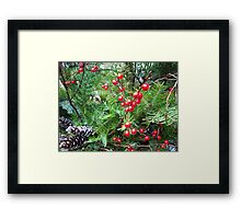 Christmas Red Berries Framed Print