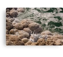 Salt Canvas Print