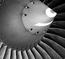 Airbus A-319 Compressor/Spinner by Marc Payne Photography