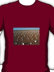 Desert Art. T-Shirt