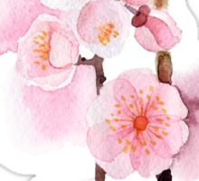 watercolor flowers of apricot Sticker