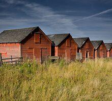 Red Barns Series 2 by Amanda White