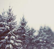 Winter Daydream #2 by ALICIABOCK
