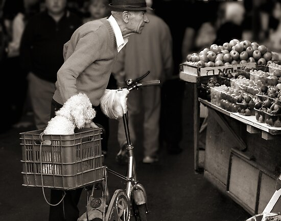 Two old friends at the market by JudyBJ