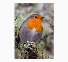 Robin in breeding plumage Unisex T-Shirt