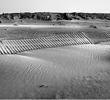 Walk on the beach  by Jeffrey  Sinnock