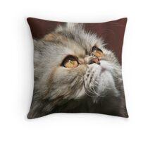 Shiraz Throw Pillow