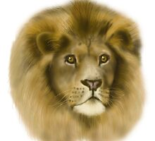 Lion by Chezz