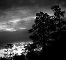 Ominous day by John Brawley