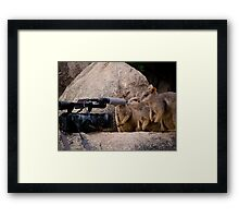 No Comment please... Framed Print