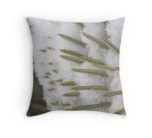 Snow on the pine tree Throw Pillow