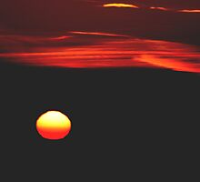 Isn't God Amazing Again? by Laurie Puglia