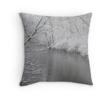 Michigan Cold Beauty Throw Pillow