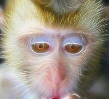 light monkey 2 by ARTISTOFLIGHT