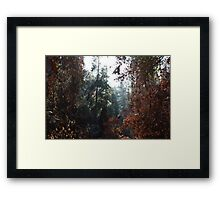 Fire & Life Framed Print