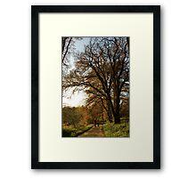 Let's walk together  Framed Print