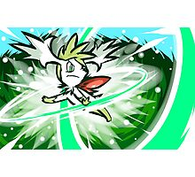 Shaymin | Seed Flare Photographic Print