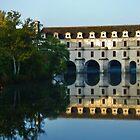 Château de Chenonceau Reflection by Alison Cornford-Matheson