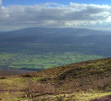 View from Trail up to top of Slievenamon, Tipperary by Mark O'Toole