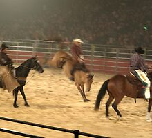 Equitana Rodeo 2008 - 8 Second Ride! by skyhorse