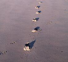 Footsteps in the sand by Calum Davidson