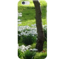 Snow Drops iPhone Case/Skin
