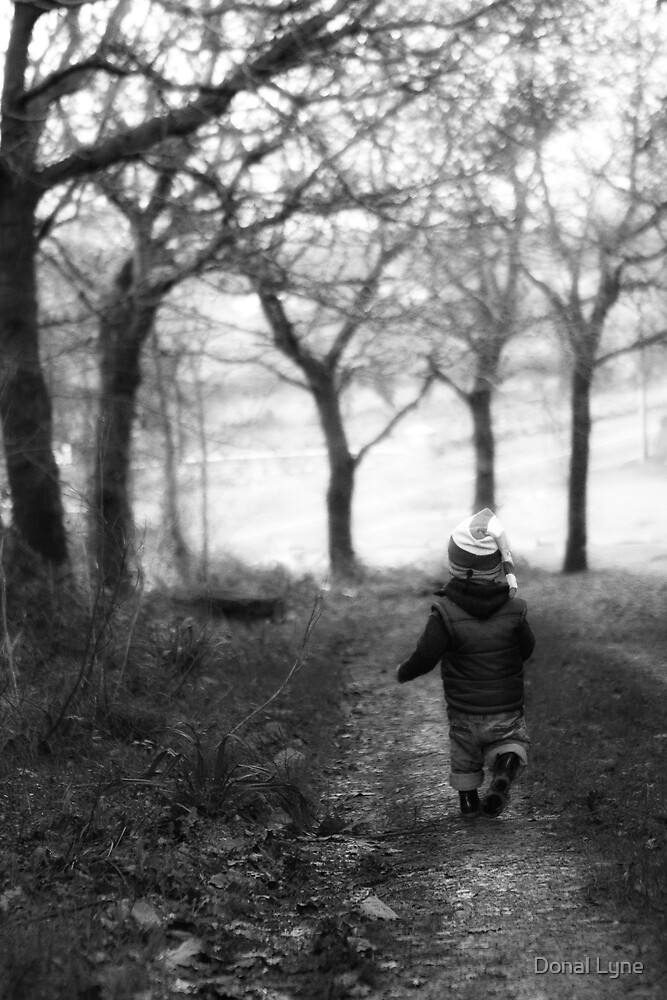 Walk in the Park by Donal Lyne