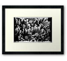 00391 Framed Print