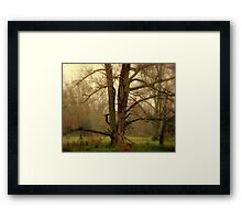 One Foggy Day  Framed Print