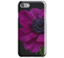 Single pink anemone iPhone Case/Skin