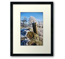 frozen  post Framed Print