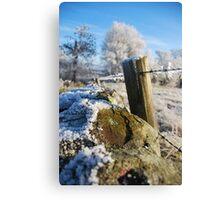 frozen  post Canvas Print