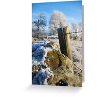 frozen  post Greeting Card