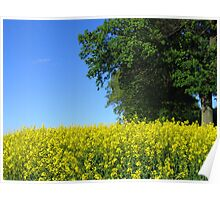 Yellow Blue Green Poster