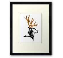 The stag Framed Print