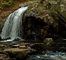 Turtletown Creek East Falls I by John O'Keefe-Odom
