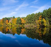 Fall Reflects by Karol Livote