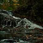 Turtletown Creek West Falls I by John O'Keefe-Odom