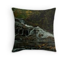 Turtletown Creek West Falls I Throw Pillow