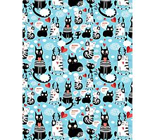 bright pattern cat lovers Photographic Print