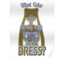What Color is the Dress? Poster