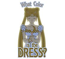 What Color is the Dress? Photographic Print