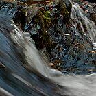 Turtletown Creek West Falls IV by John O'Keefe-Odom