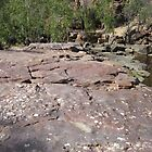 Sediment & colour in the Rocks! Umbrwarra Gorge, Nth. Territory. by Rita Blom