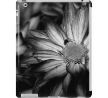 00392 iPad Case/Skin