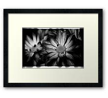 00392 Framed Print
