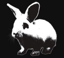 dark bunny by kolografie