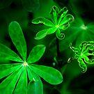 Green by Jenny Miller