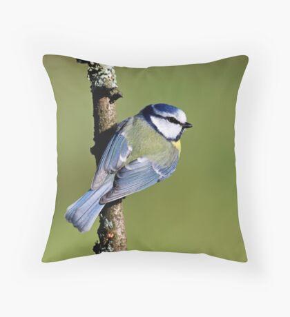 Blue Tit  --- Cyanistes Caeruleus Throw Pillow