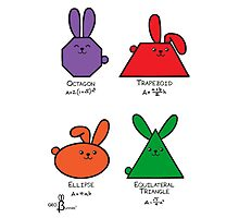 4 GeoBunnies, Octagon, Trapezoid, Ellipse, Equilateral Triangle Photographic Print